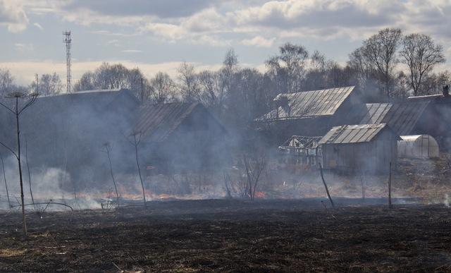 В Вилейском районе дачница, сжигая траву, подожгла семь строений