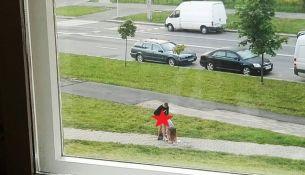 Очевидец секса на улице