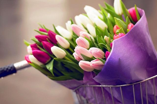 8 марта: хватит ли тюльпанов всем жительницам Пинска?