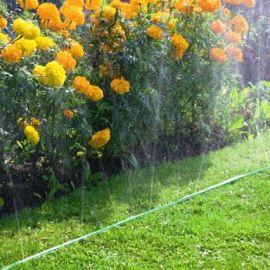 Туманобразователи и шланги для садового полива