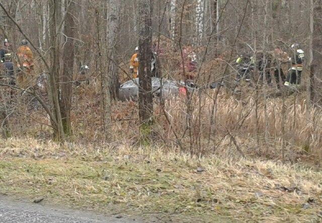 Вужасном ДТП вЖитковичском районе погибли три человека