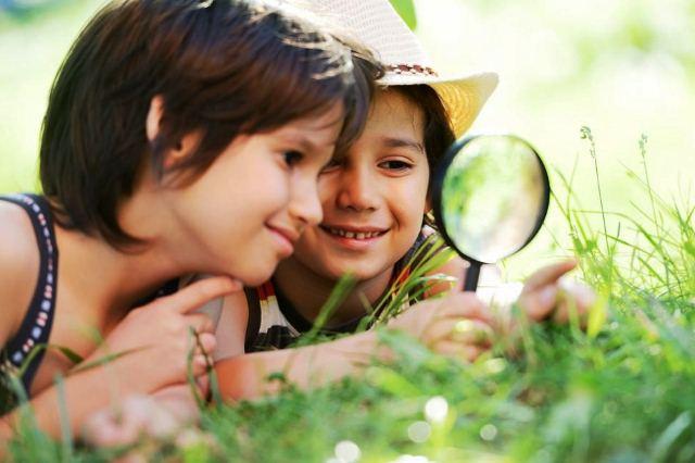как завести друзей, формирование природоведческих понятий у детей