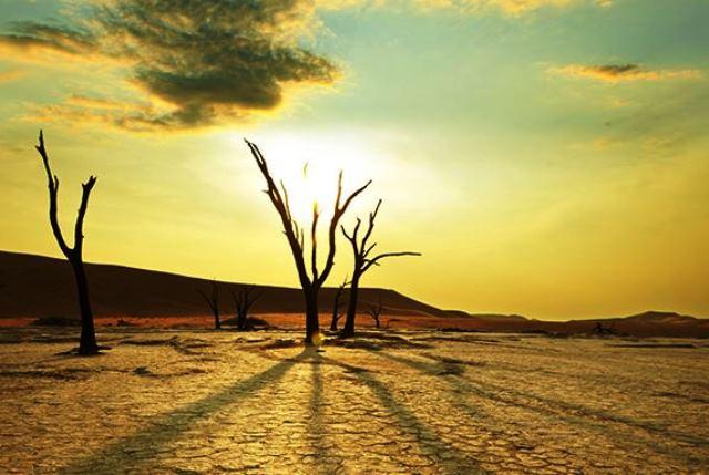 Ученые: с каждым годом лето будет все длиннее - фото