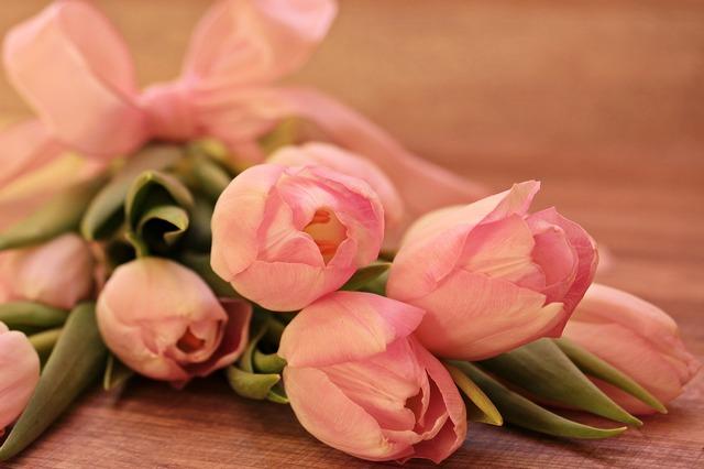 тюльпаны оптом - фото