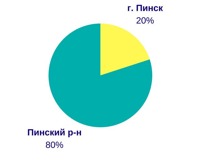 Какие дома чаще покупают пинчане - диаграмма