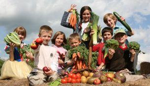 Агроклассы появятся в школах Беларуси в новом учебном году - фото