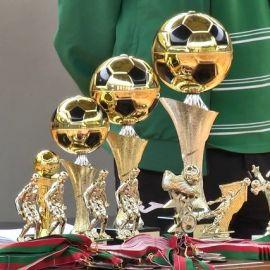 Кубки турнира по мини-футболу - фото