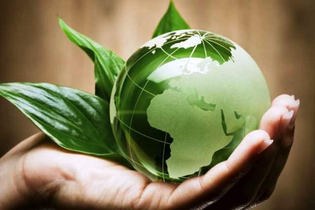 Экологический мониторинг окружающей среды - фото