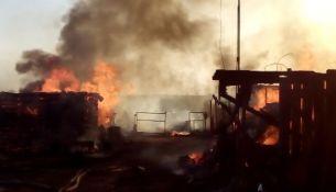 Пожар в д. Борки - фото
