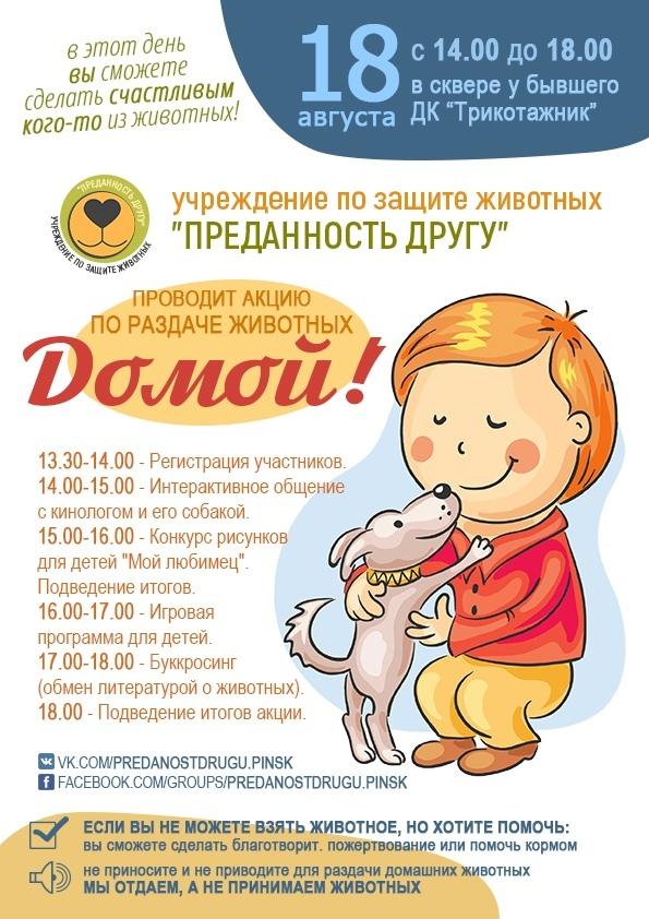 «Домой»: акция по раздаче животных пройдет в Пинске 18 августа - фото
