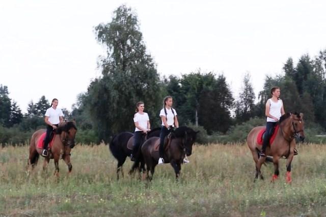 Конный праздник в д. Стытычево - фото