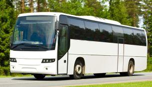 белый снится автобус