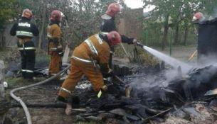 Пожар в Пинском районе - фото