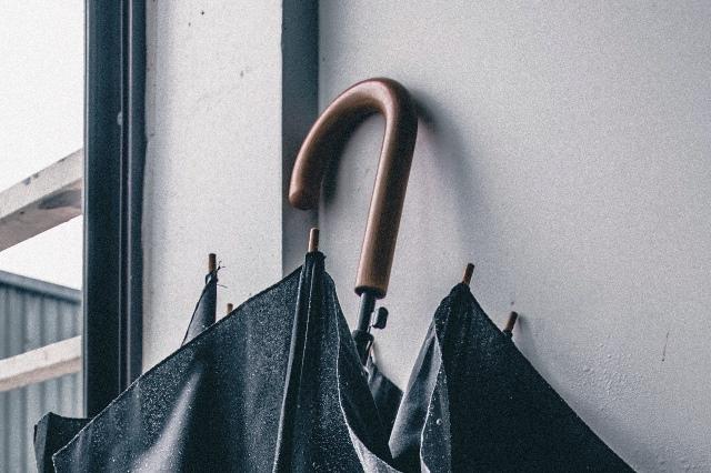 Как правильно высушить зонт: фото