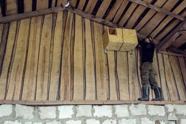 Домик для сипухи - фото