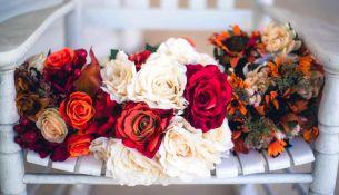 Выбираем цветы по месяцу рождения: цветочный гороскоп - фото