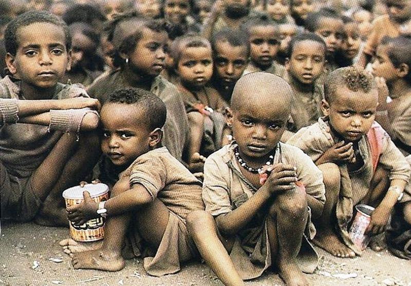 : Земле грозит массовый голод - фото