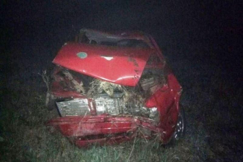 ДТП в Пинском районе: водитель на Audi съехал в кювет и разбился - фото