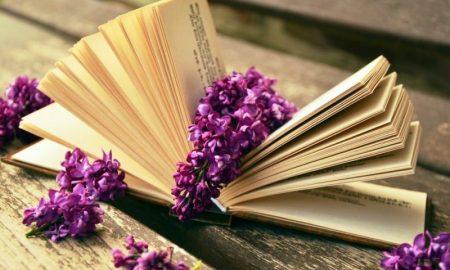 Важный перечень недооцененных книг, требующих прочтения - фото