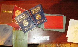пинские пограничники задержали художника из Кобрина - фото