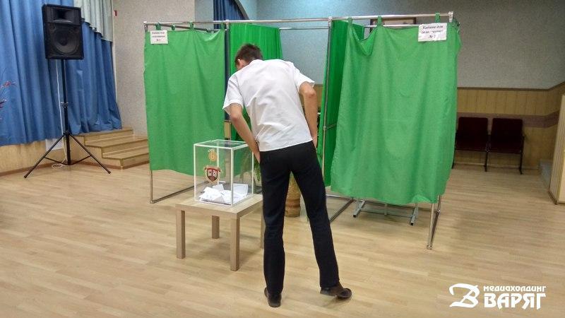 Выборы школьного парламента - фото