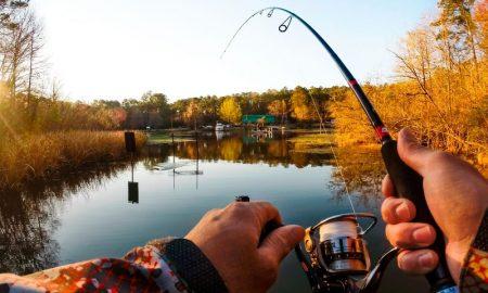 леска для рыбалки - фото
