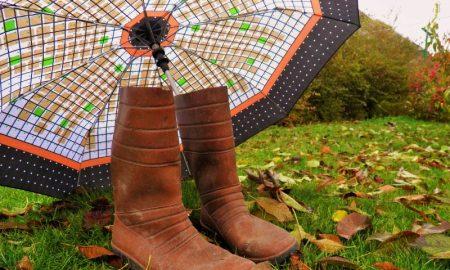 Зонт и сапоги - фото