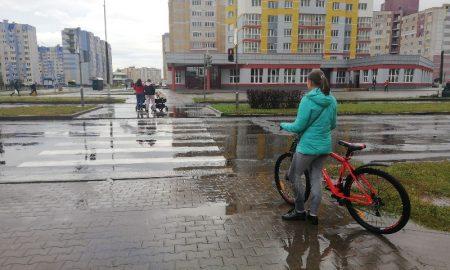 контроль за соблюдением пешеходами ПДД - фото, Пинск, дорога