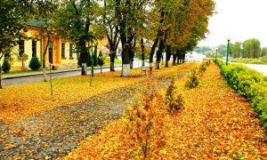 Температурный рекорд дня - фото, Пинск