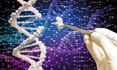 геном человека - фото