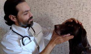 Ветеринарный врач - фото
