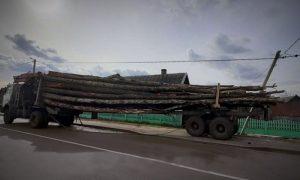 лесовоз повредил линию электропередач - фото