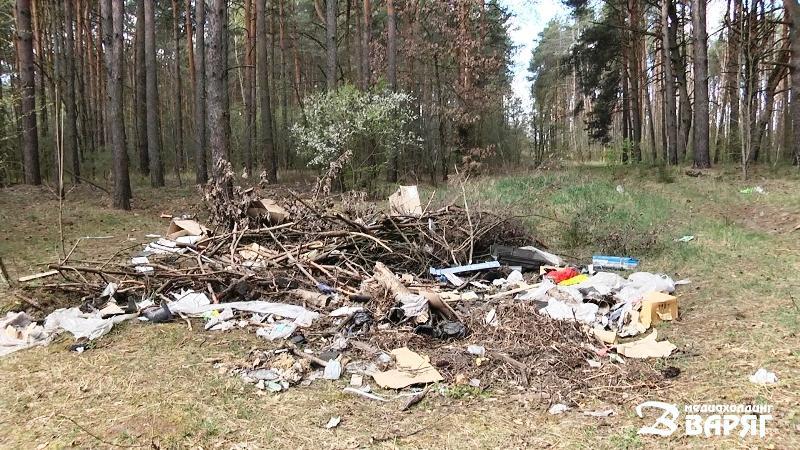 Свалка мусора - фото