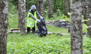 Уборка мусора - фото