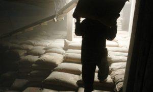Расхититель комбикормов задержан на Пинщине - фото