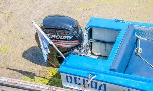 В Пинском районе утонул 11-летний подросток, фото