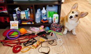 средства гигиены для собак - фото