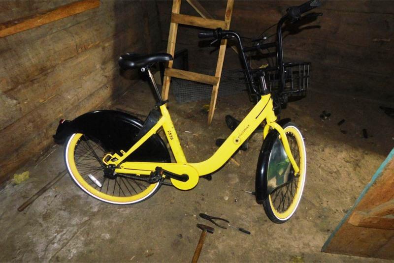 украл прокатный велосипед, Пинск - фото