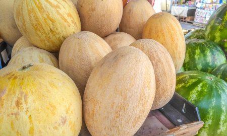 арбузы и дыни в Пинске - фото