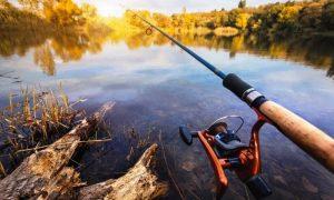 информация для любителей охоты и рыбалки на июль - фото