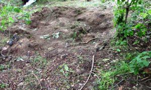 убил знакомого и закопал тело в лесу - фото