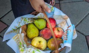 Яблочный Спас 19 августа, фото