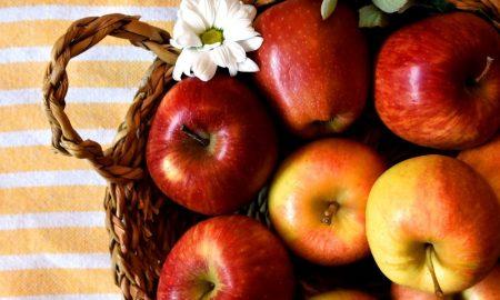 Яблоки - фото