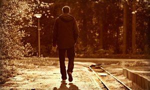 Пешеход - фото