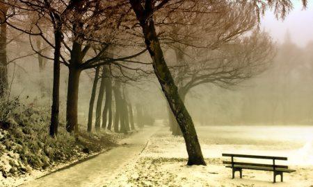 Мокрый снег - фото