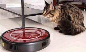 Робот-пылесос для уборки шерсти животных - фото