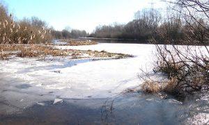 Лед - фото