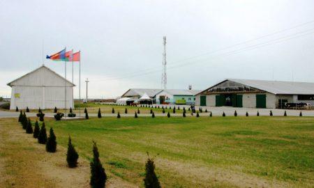 открытие молочно-товарной фермы