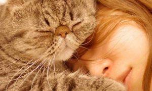 сон детей с животным