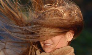 Ветер - фото